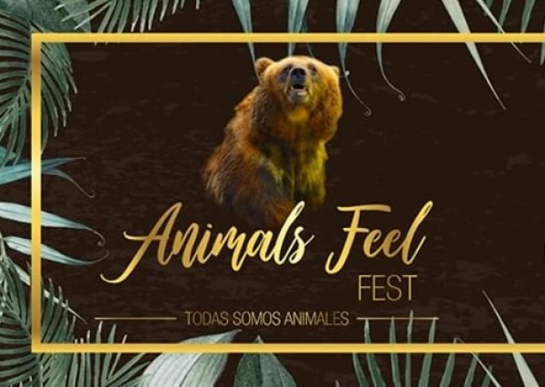Animals Feel Fest en Alicante